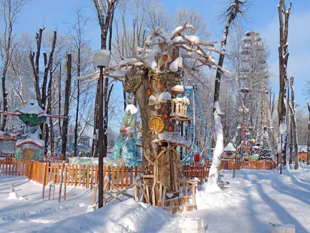 Сказочное дерево. Фото Виктории Сотниковой