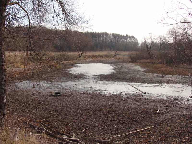 Всё, что осталось от Дулуповского озера. Фото 2014 года.