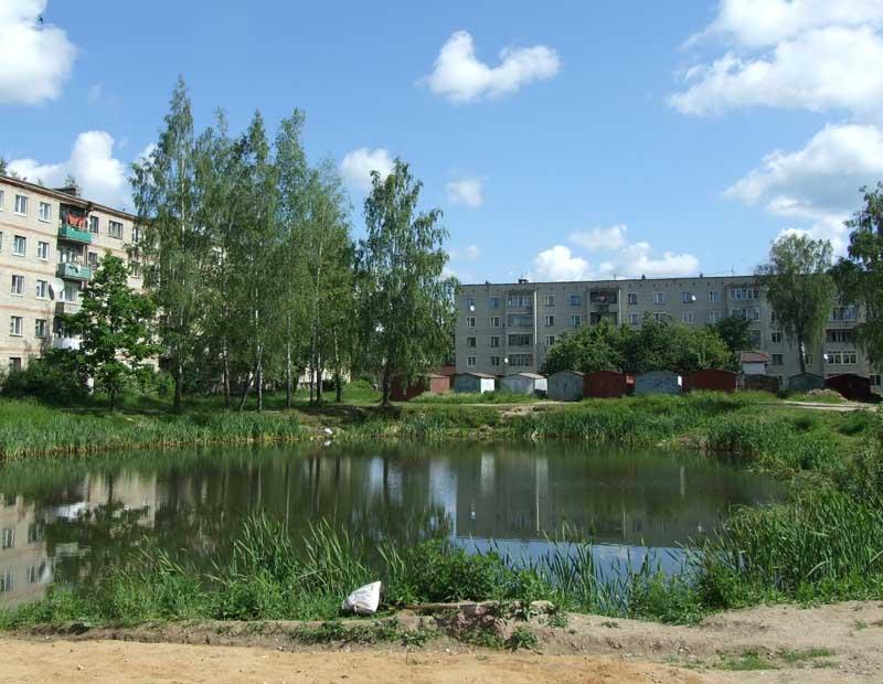 Озеро на Большой Смоленской. Июнь 2008 года.