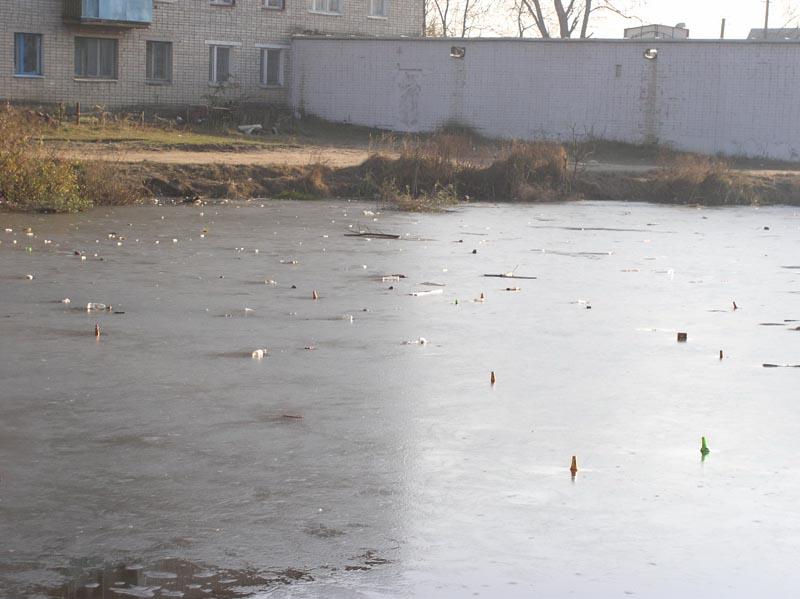 Озеро на Большой Смоленской. Ноябрь 2005 года.