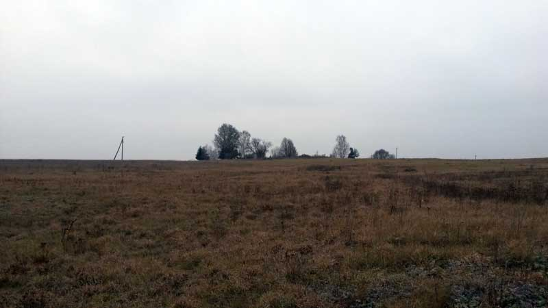 Незнановское кладбище