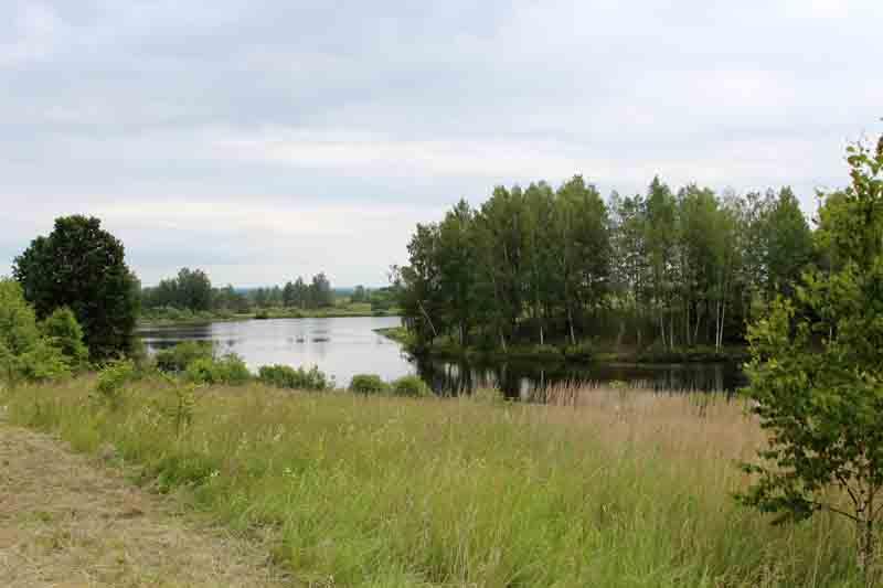Озеро у д. Волковичи - место проведения фестиваля